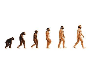 Un Suisse sur 4 doute de la théorie de l'évolution